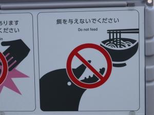【四国水族館】海豚に会いに行ってきました(^▽^)/