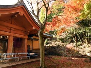 香川の紅葉スポット 第82番札所【根香寺】