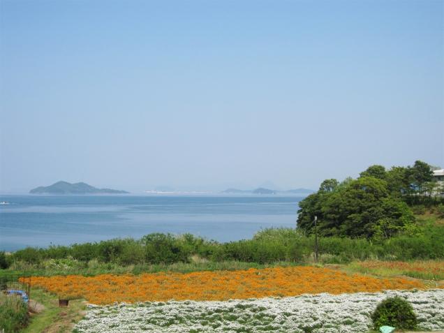 三豊市の詫間町の「フラワーパーク浦島」