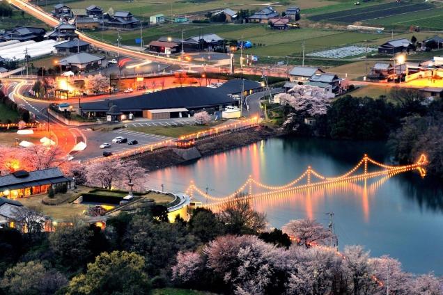 香川県桜の名所④「戸川ダム公園」