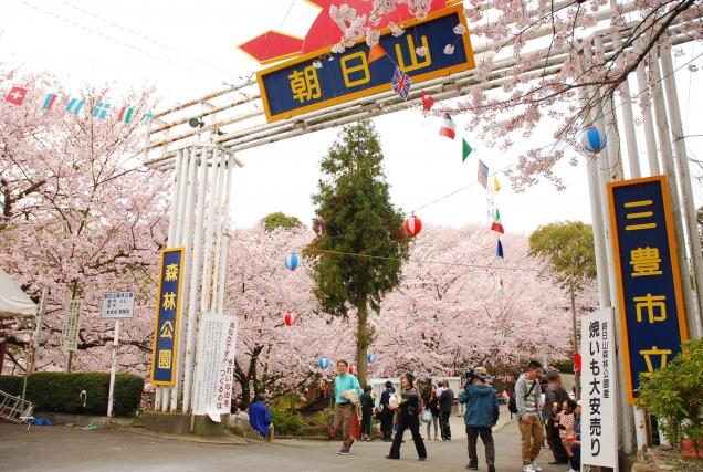 ソメイヨシノが約2000本咲き誇る「朝日山森林公園」