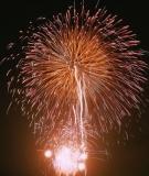 香川県花火情報②第50回さぬき高松まつり花火大会 どんどん高松