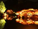栗林公園★秋のライトアップ ※いよいよ12月2日まで