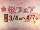昼限定ランチバイキング 桜フェア はじまりました!