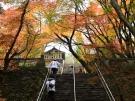 第82番札所 根香寺の紅葉が見頃♪
