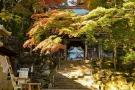 香川県の紅葉スポット 「大窪寺」