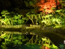 栗林公園「秋のライトアップ」