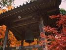 香川県の紅葉スポット 第81番札所【白峯寺】 紅葉が見頃です♪