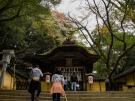 香川県【金刀比羅宮】が自然に映える石段の寺社 全国第2位にランクイン!