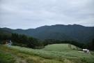"""香川まんのう町・標高800メートルの天空の地""""島ヶ峰""""にある棚田のそば畑"""
