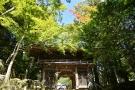 【香川の紅葉スポット】大窪寺~少し色づき始めていました