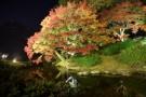 四國最美庭園 - 栗林公園