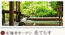紅梅亭ガーデン 花てらす